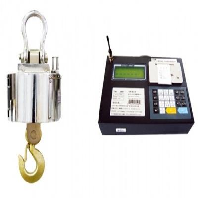 无线数传式电子吊钩秤(微打仪表)